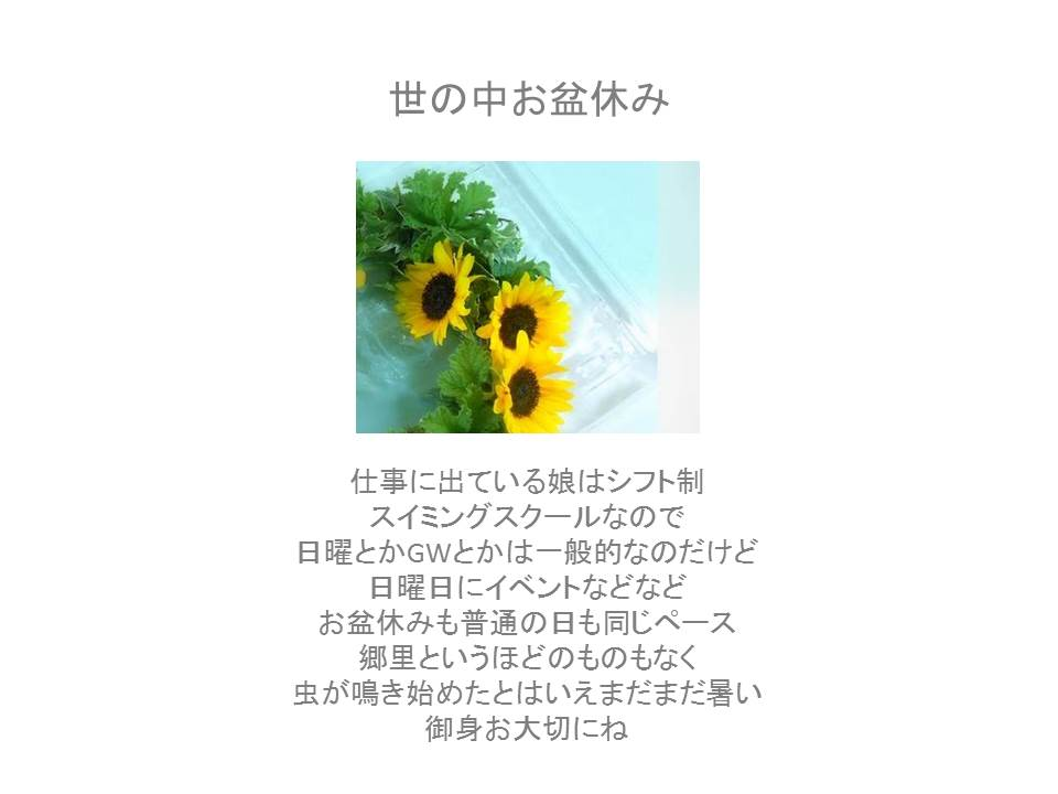 e0207606_1336130.jpg