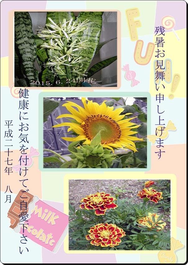 f0047824_1462062.jpg