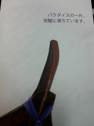 f0001835_17582447.jpg