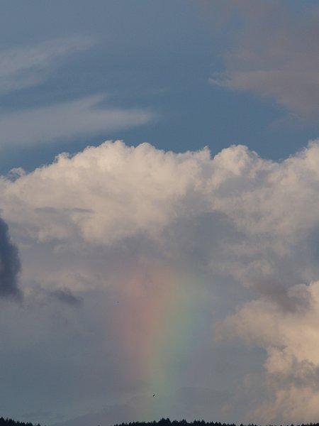 2015年8月21日 甲州・信州散策⑦ 高原の空に虹を架けよう_b0341140_2138668.jpg