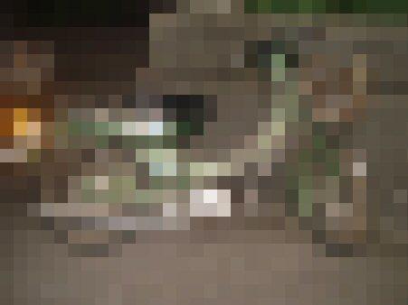 f0329554_13454884.jpg