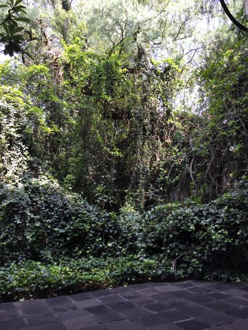 2015 Mexico ルイス・バラガン邸 3_c0108595_1233723.jpg