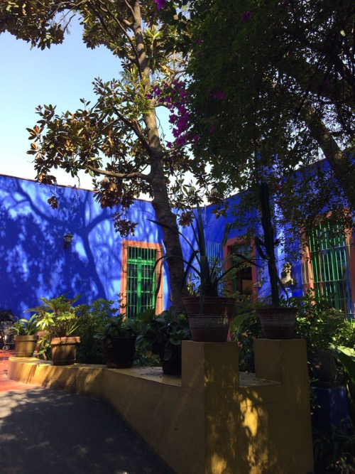 2015 Mexico フリーダ・カーロ邸_c0108595_255645.jpg
