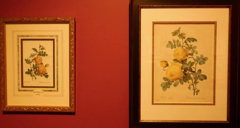 ルドゥーテの《バラ図譜》 フォリオ判とオクタヴォ判って?_e0356356_18211069.jpg