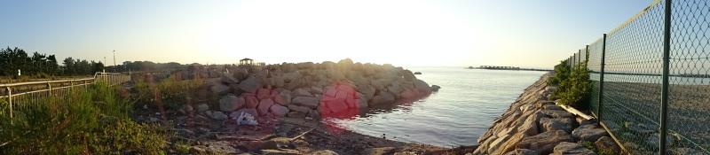 大阪府立大学『2015:カニ調査』第5日目・・・せんなん里海公園_c0108460_23294069.jpg