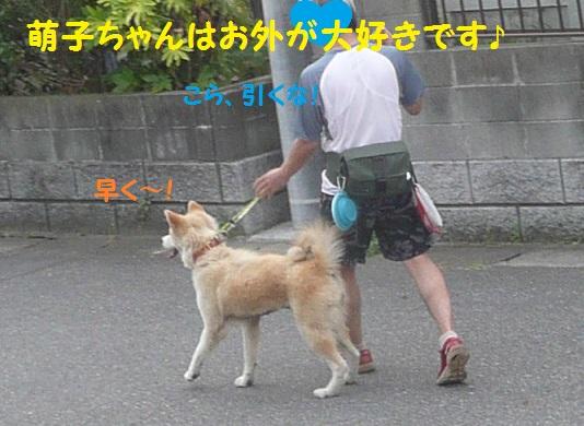 f0121712_16325333.jpg