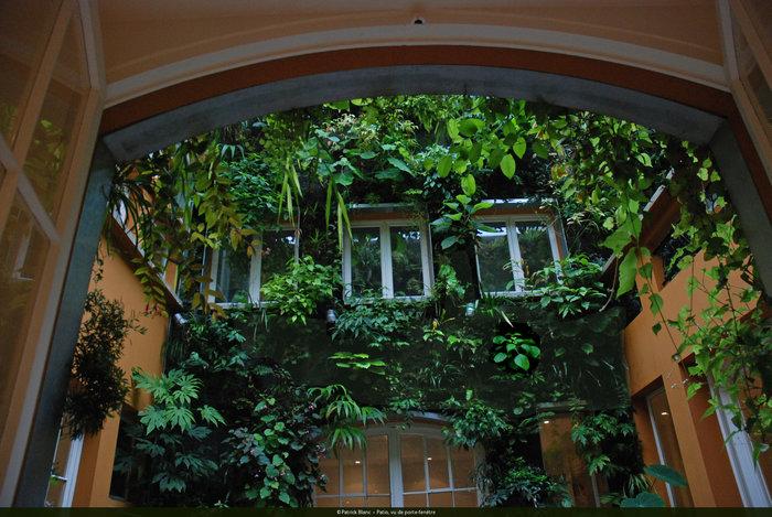 垂直庭園_e0149215_22543478.jpg