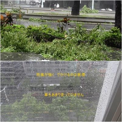 台湾旅行(三日目)台風一過 お散歩 台北駅周辺_a0084343_16011968.jpg