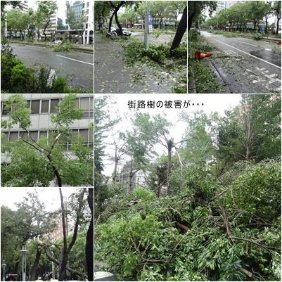 台湾旅行(三日目)台風一過 お散歩 台北駅周辺_a0084343_16013044.jpg