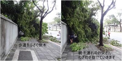 台湾旅行(三日目)台風一過 お散歩 台北駅周辺_a0084343_16021380.jpg
