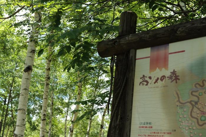 久しぶりのサモキャンプ part1_a0049296_194568.jpg