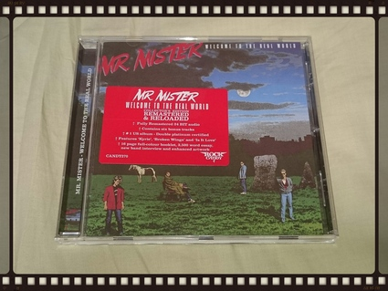 MR.MISTER / WELCOME TO REAL WORLD_b0042308_1425379.jpg