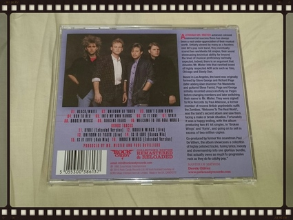 MR.MISTER / WELCOME TO REAL WORLD_b0042308_1425870.jpg