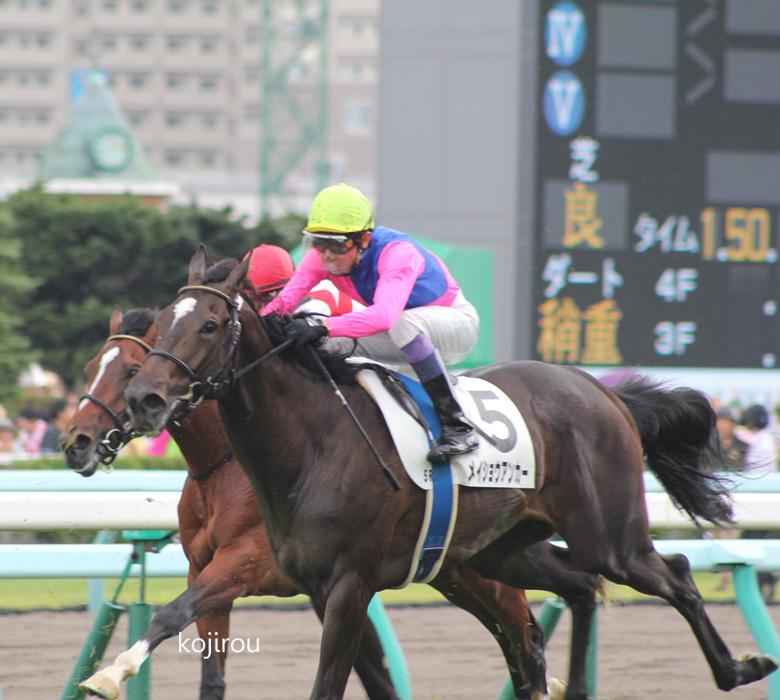 札幌のユタカ。_a0009035_911273.jpg