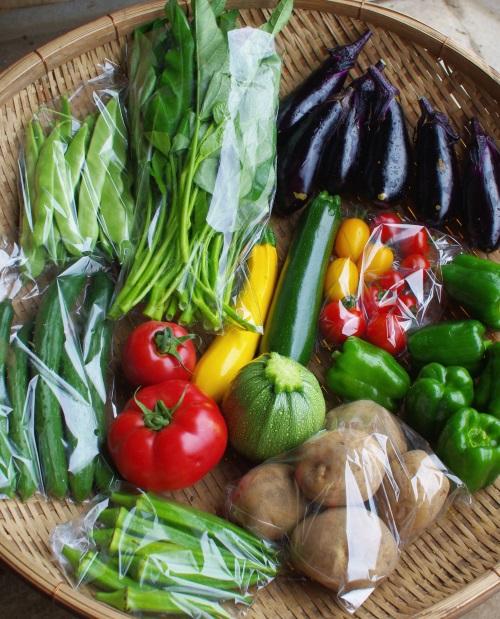 今週の野菜セット(8/18~8/22着)_c0110869_1345428.jpg