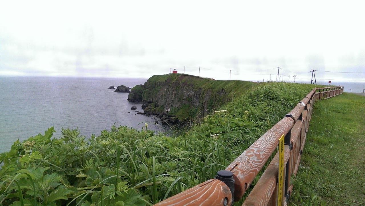 オオジュリン、オオセグロカモメ、ウミウ   北海道旅行その37  霧多布_a0052080_10593300.jpg
