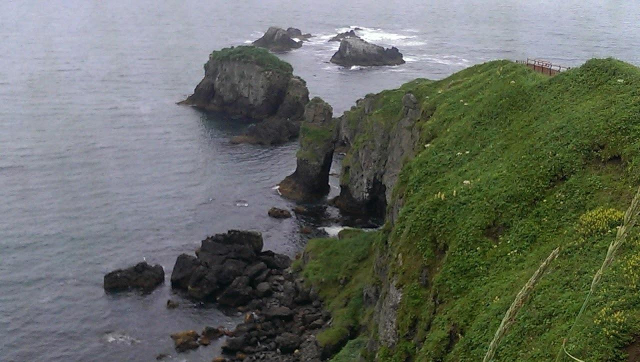オオジュリン、オオセグロカモメ、ウミウ   北海道旅行その37  霧多布_a0052080_10593992.jpg