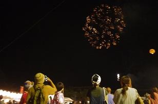 「デガンショ祭り」2015年・夏_f0226293_22133867.jpg