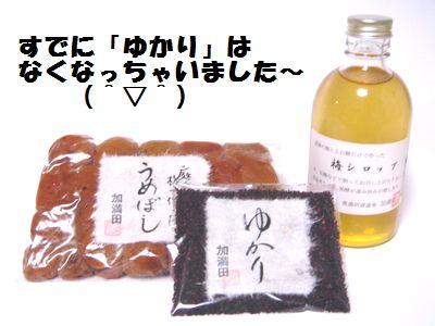 加満田の梅はおいしーよ_e0234016_17564545.jpg