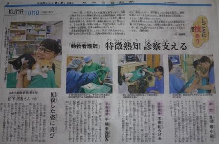 熊本日日新聞2015年8月8日掲載猫 空編。_a0143140_22425957.jpg