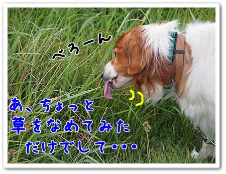 d0013149_22355357.jpg