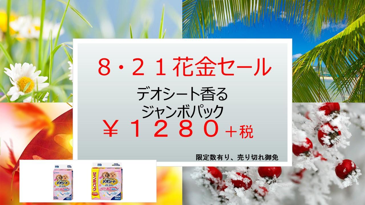150818 花金セール&イベント告知_e0181866_9584777.jpg