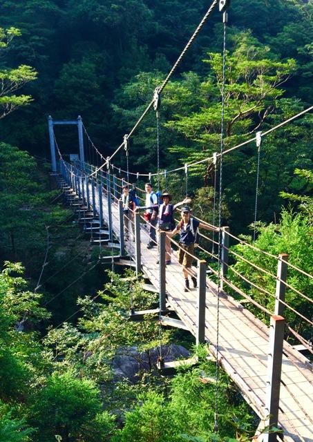 世界自然遺産「屋久島」の白谷雲水峡で山ガールにチャレンジ♪_a0138976_1417228.jpg