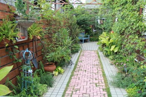 ◆久しぶりの庭仕事とカミキリムシのその後_e0154682_22431817.jpg