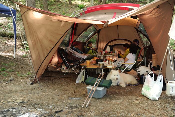 久しぶりのサモキャンプ part3_a0049296_2029221.jpg