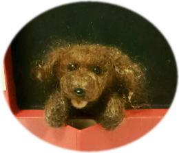 ほのぼの羊毛*MOMO教室_d0142770_09412652.jpg
