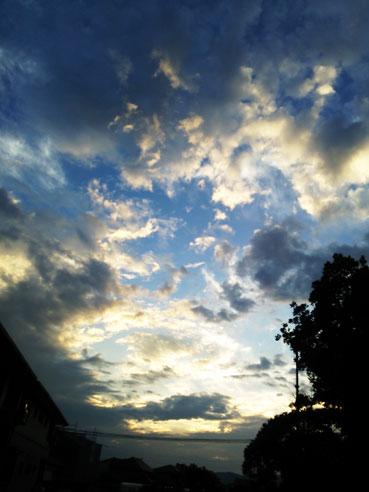 今日は朝から雨_f0043592_9354328.jpg