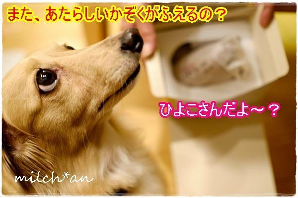 b0115642_21273217.jpg