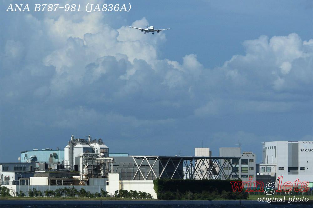 '15年 京浜島・つばさ公園レポート・・・ANA/JA836A_f0352866_23334850.jpg