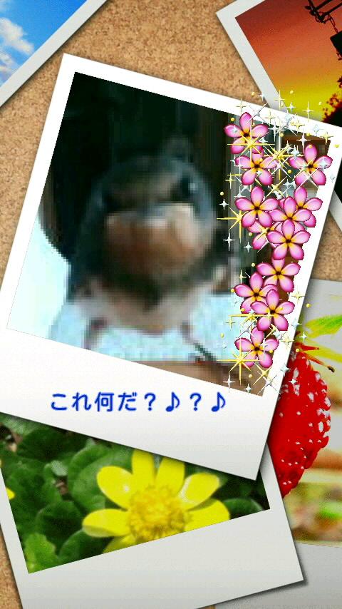 f0200871_0505424.jpg