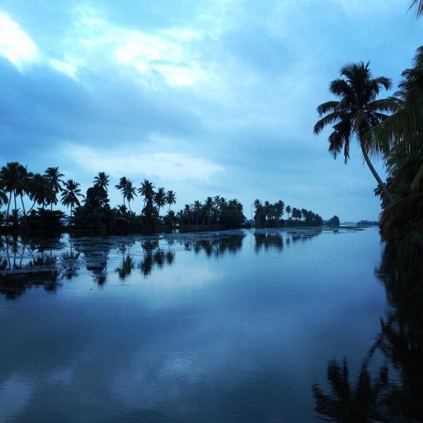 LOVE Kerala!_a0086851_12472236.jpg