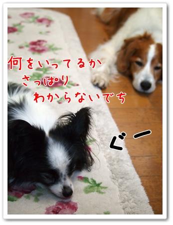 d0013149_1214697.jpg