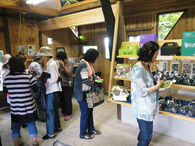 熊本ぶどう 社方園 第8回ぶどう祭り その1_a0254656_192637100.jpg