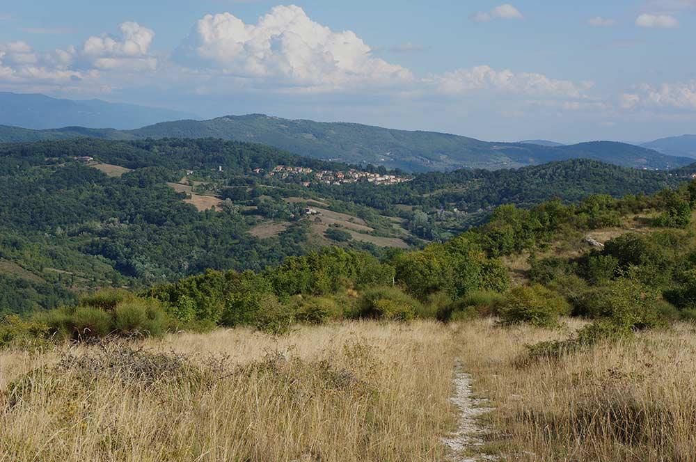 山の上まで散歩に行こう_f0106597_213409.jpg
