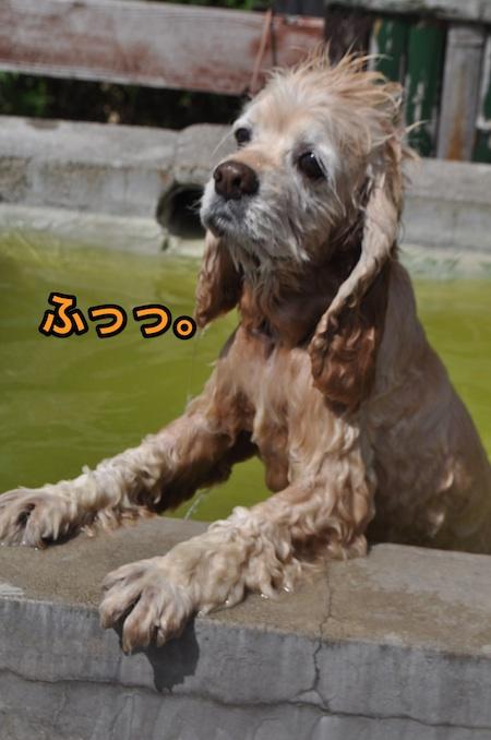 b0067012_214046.jpg