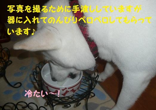 f0121712_1634711.jpg