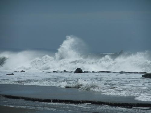 相模湾は高波注意...です。_b0137932_1482872.jpg