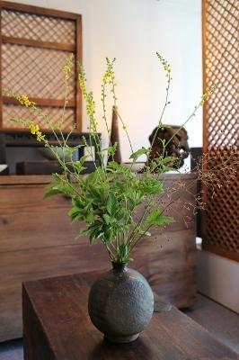 花だより 金水引とハゼラン_a0279848_17441622.jpg