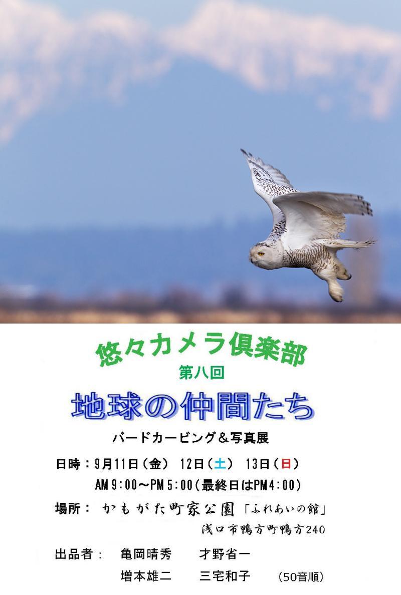 d0013455_1115271.jpg