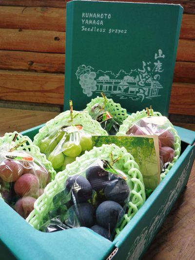 熊本ぶどう 社方園 第8回ぶどう祭り その2_a0254656_19264510.jpg