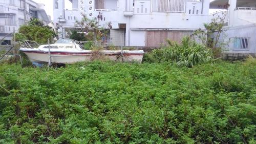 台風待ち_e0131462_08532617.jpg