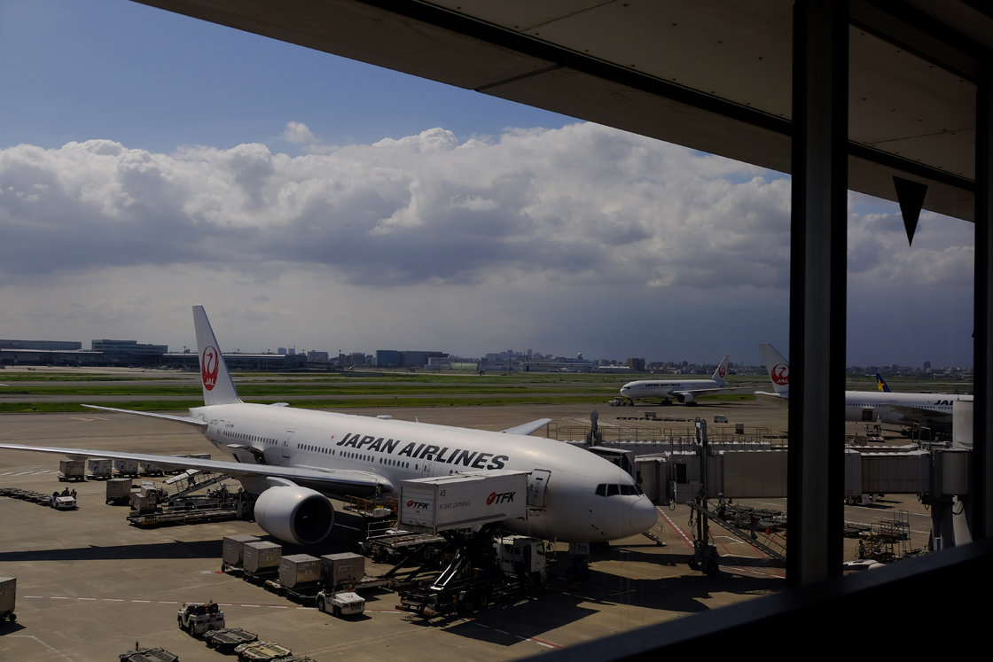 青空に向かって久しぶりの飛行機の旅です_a0031363_2243214.jpg