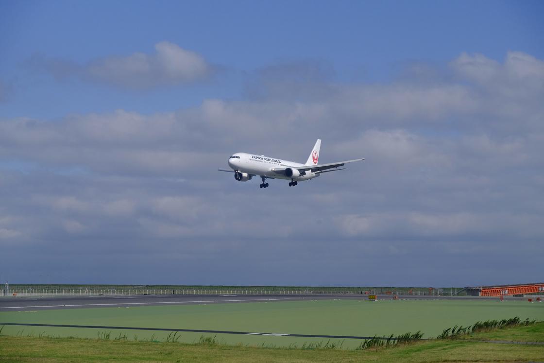 青空に向かって久しぶりの飛行機の旅です_a0031363_22435517.jpg