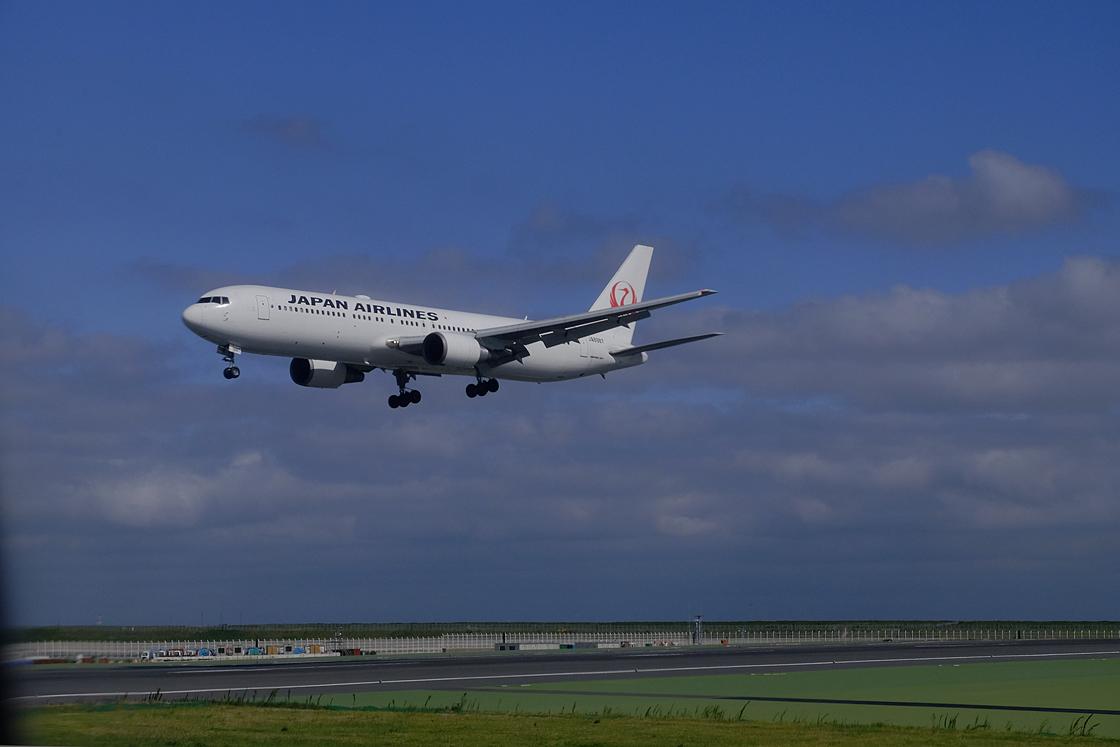 青空に向かって久しぶりの飛行機の旅です_a0031363_22443142.jpg