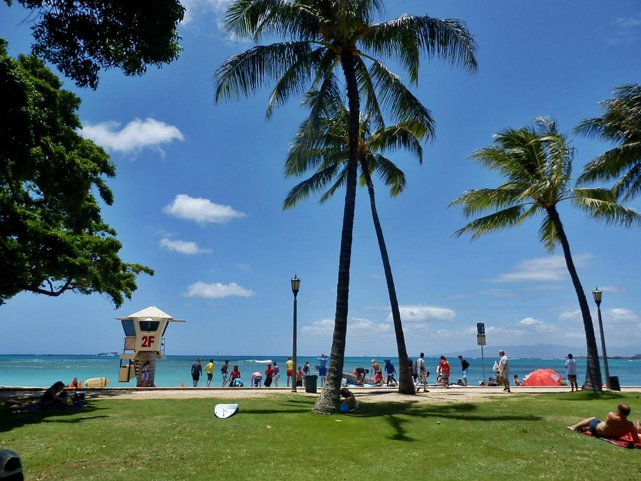 ◆ハワイへ・・・プルメリア&お買い物_e0154682_17565592.jpg