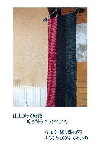カシミヤ100%で、3色引き返し千鳥格子_c0221884_23171241.jpg